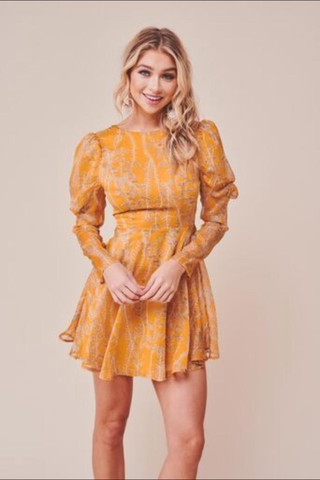 Chikas Mustard Leaf Dress - Front Cropped Image