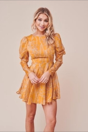 Chikas Mustard Leaf Dress - Front cropped