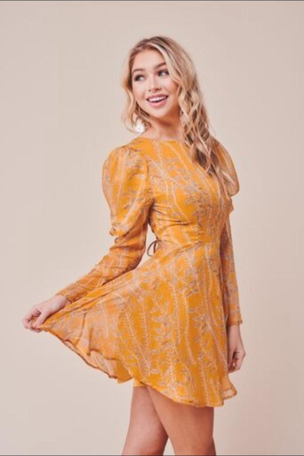 Chikas Mustard Leaf Dress - Front Full Image