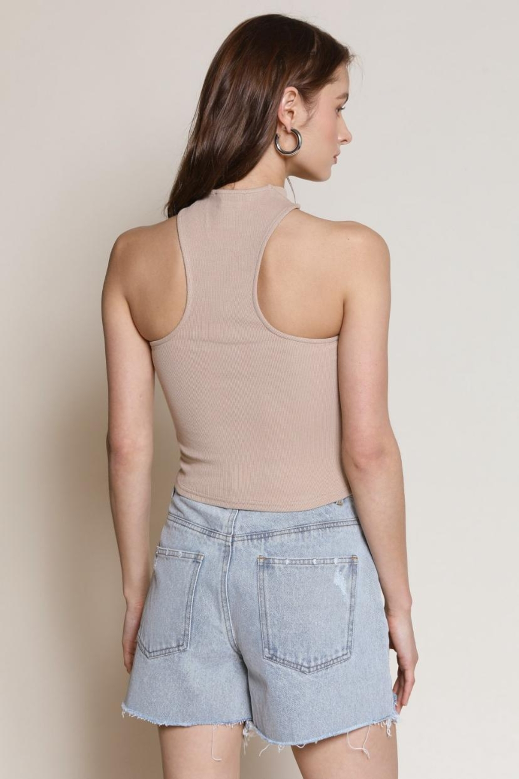 Chikas Taupe Crop Top - Front Full Image