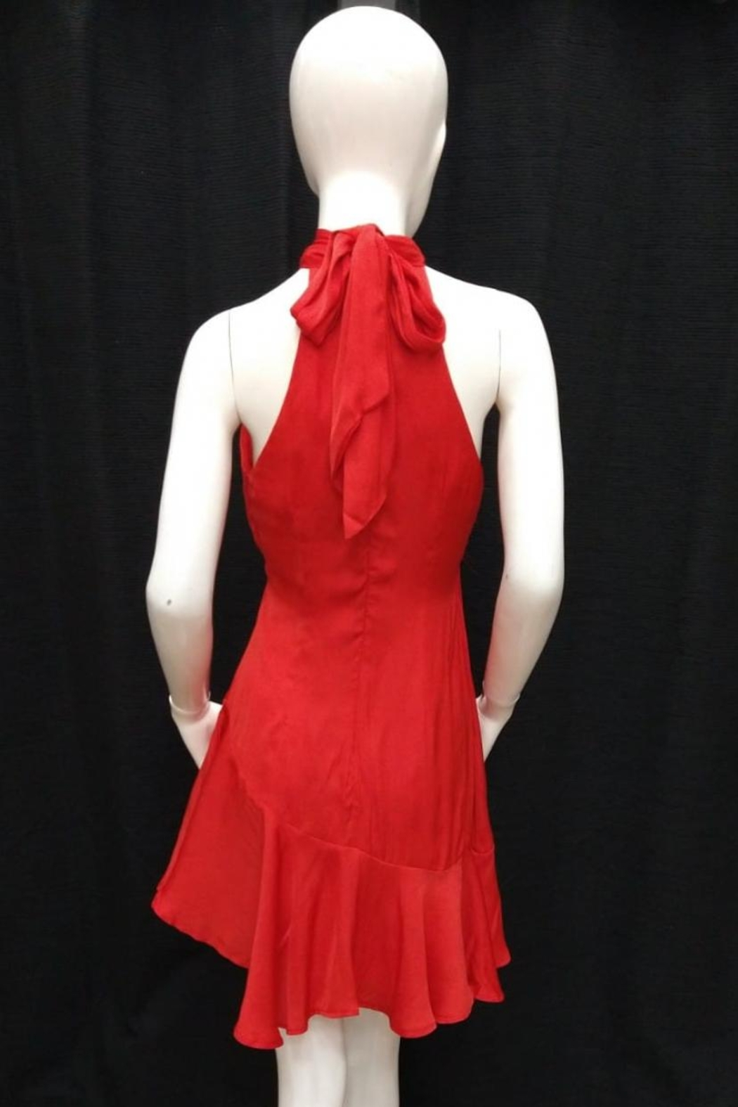 Chikas Tie Back Dress - Front Full Image