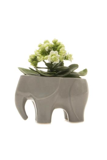 Chive Elephant Vase Grey From Long Island By Clarkes Garden And