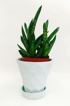 Shoptiques Product: Matte Diamond Planter