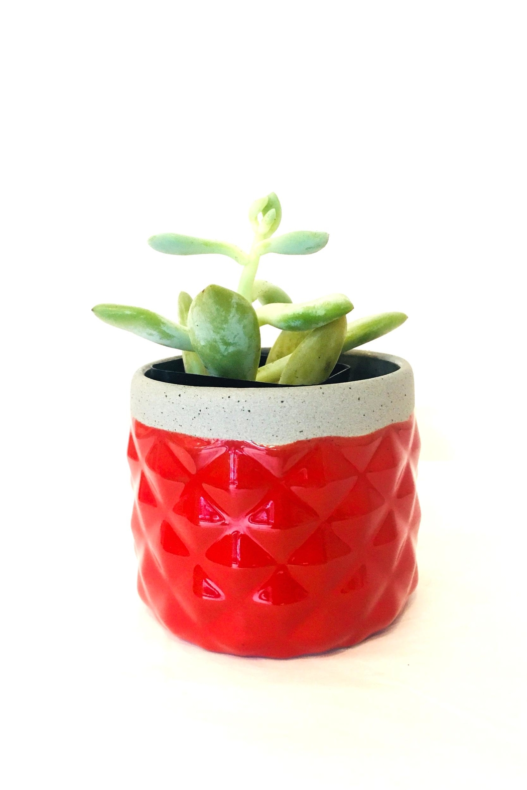 Chive Modern Red Planter - Main Image