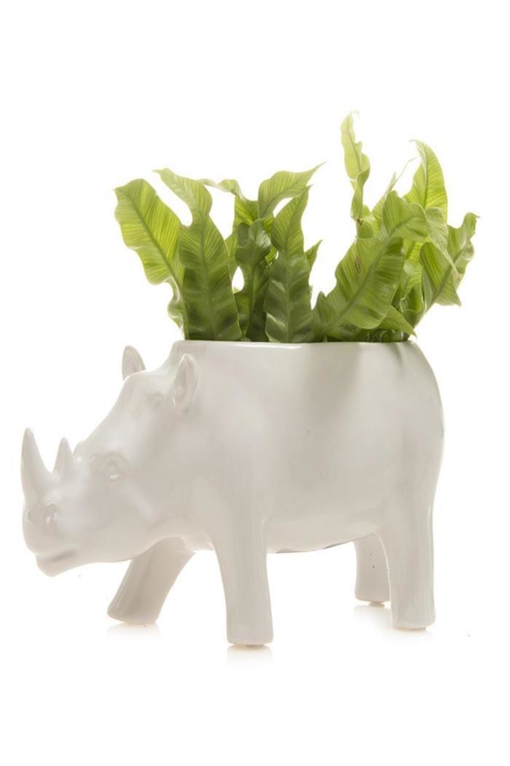 Chive Rhino Planter - Side Cropped Image