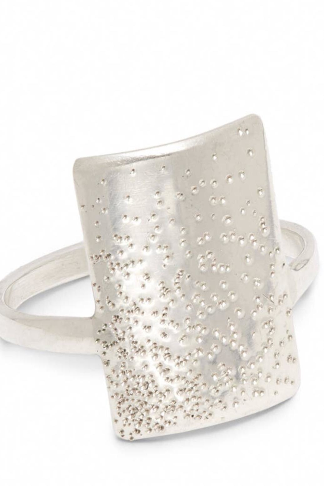 Christina Kober Designs Ever Long Diamond Dusted Ring - Main Image