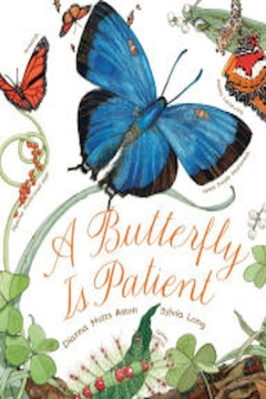 Shoptiques Product: A Butterfly Book