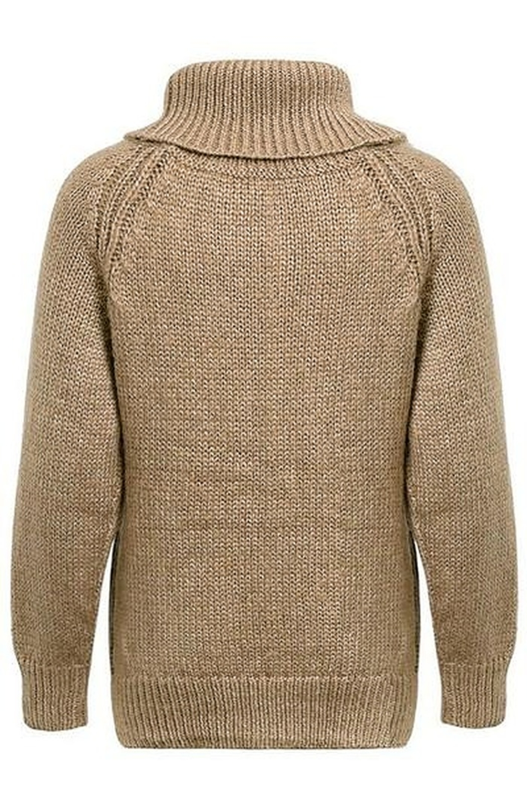 Hidden Valley Chunky Collar Knit Sweater - Front Full Image