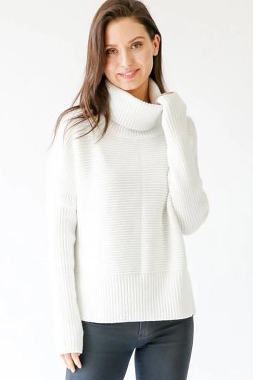 Six Fifty Chunky Turtleneck Sweater - Front Cropped Image