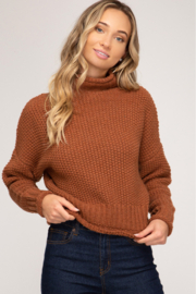 She + Sky Chunky Turtleneck Sweater - Front cropped