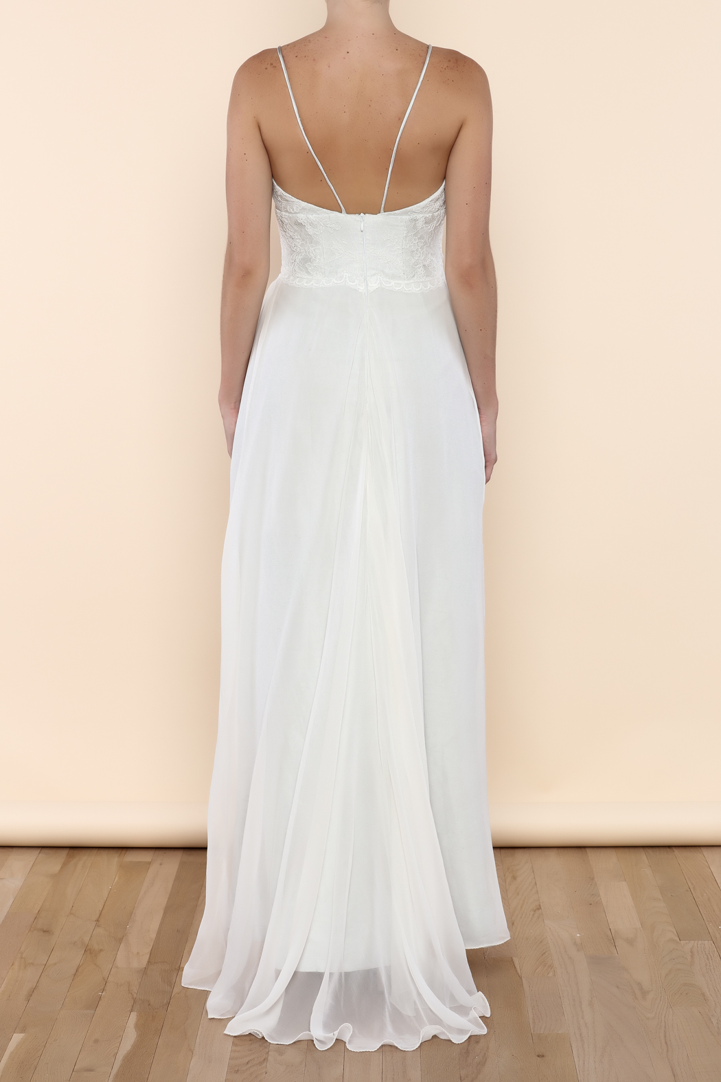 Cicada Clara Gown - Back Cropped Image