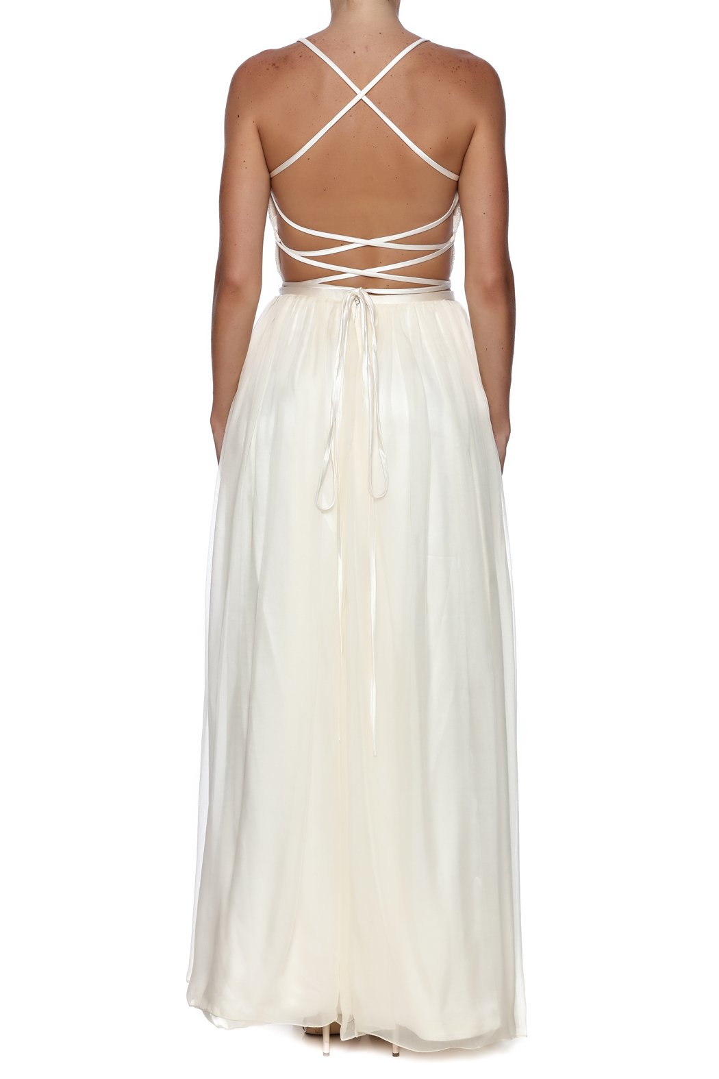 Cicada Zola Gown - Back Cropped Image