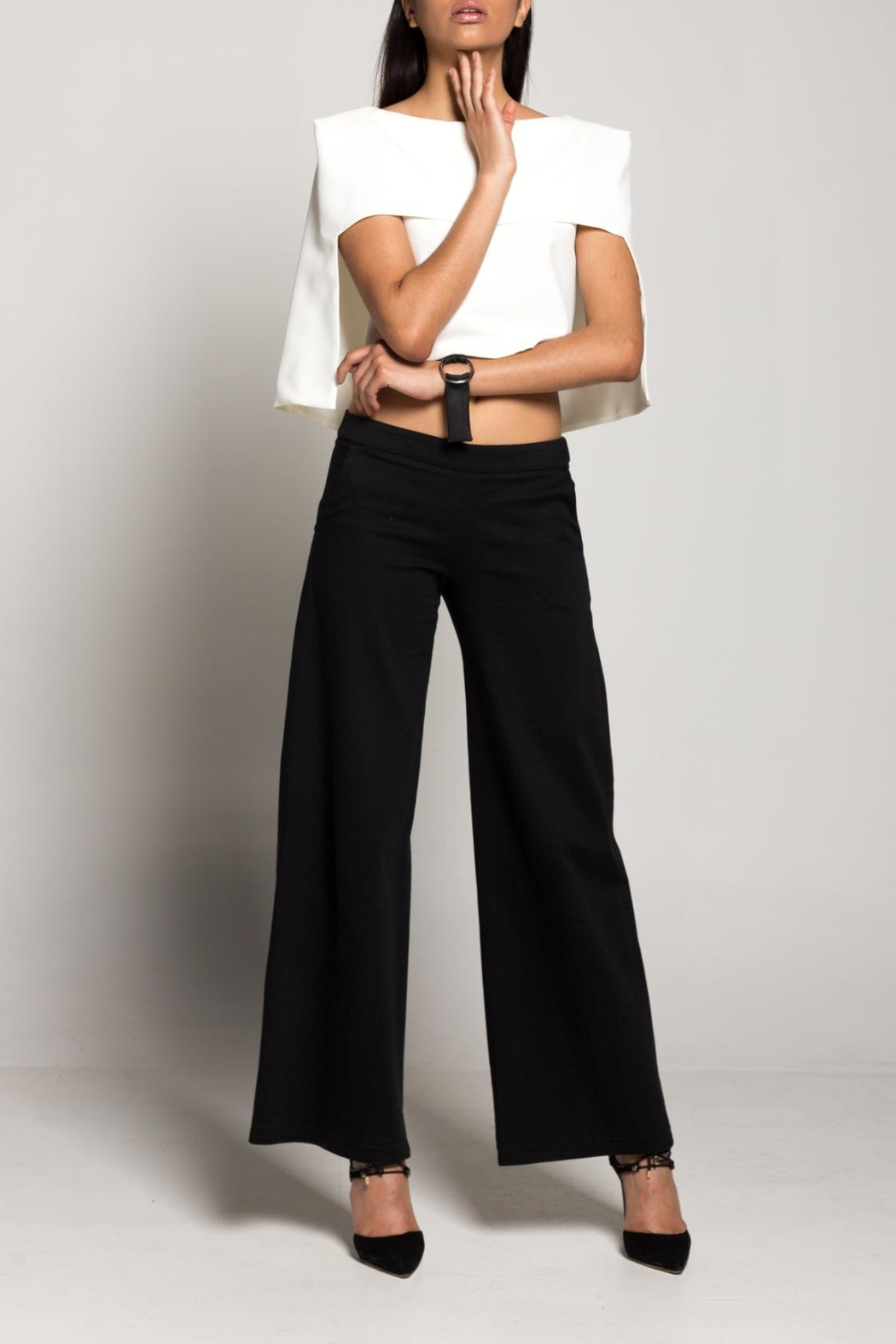 Cihuah Flared Trousers - Front Cropped Image