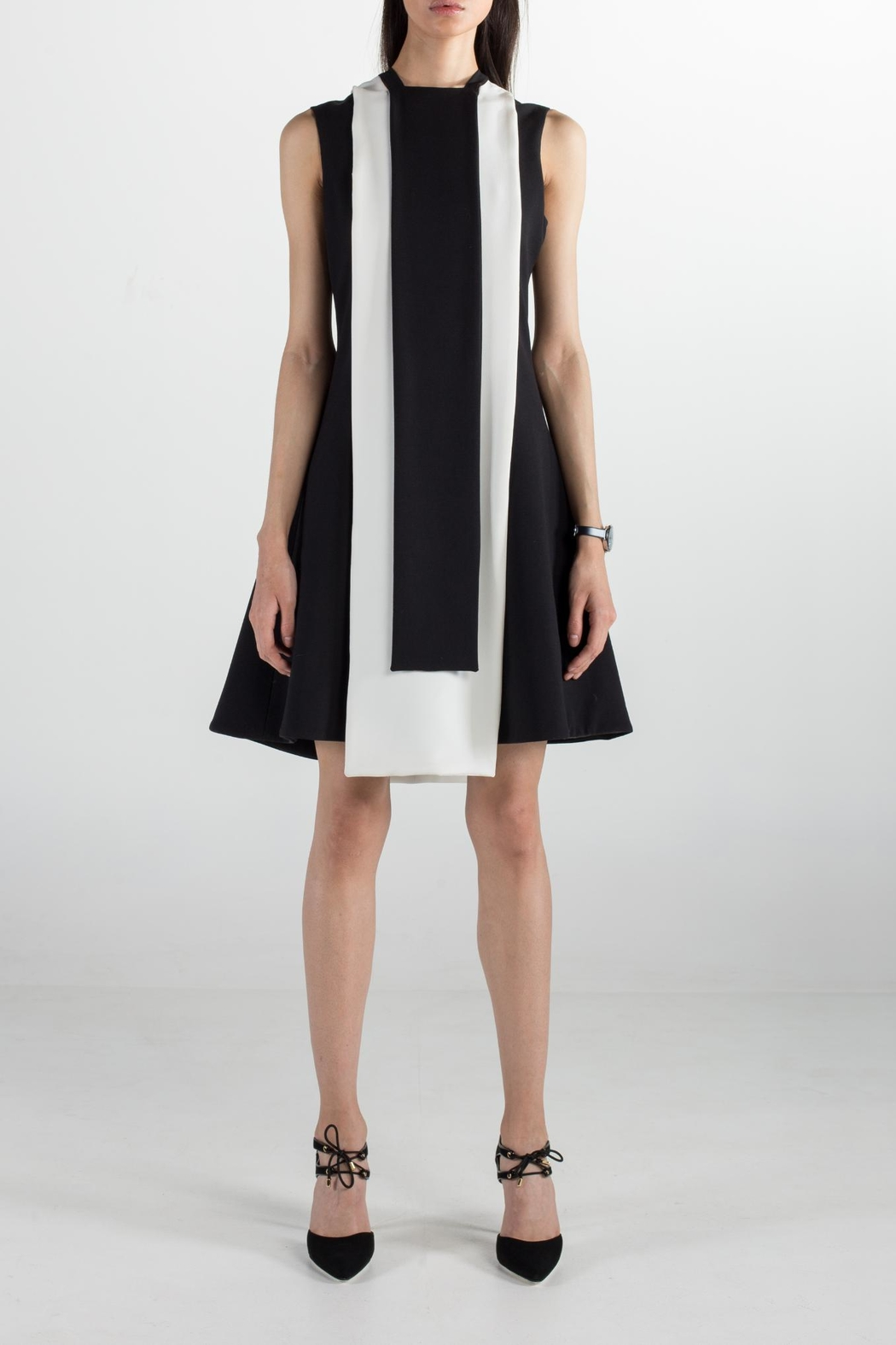 Cihuah Quorum Dress - Main Image