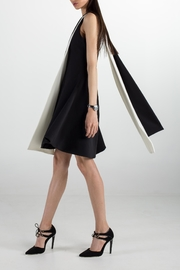 Cihuah Quorum Dress - Front full body