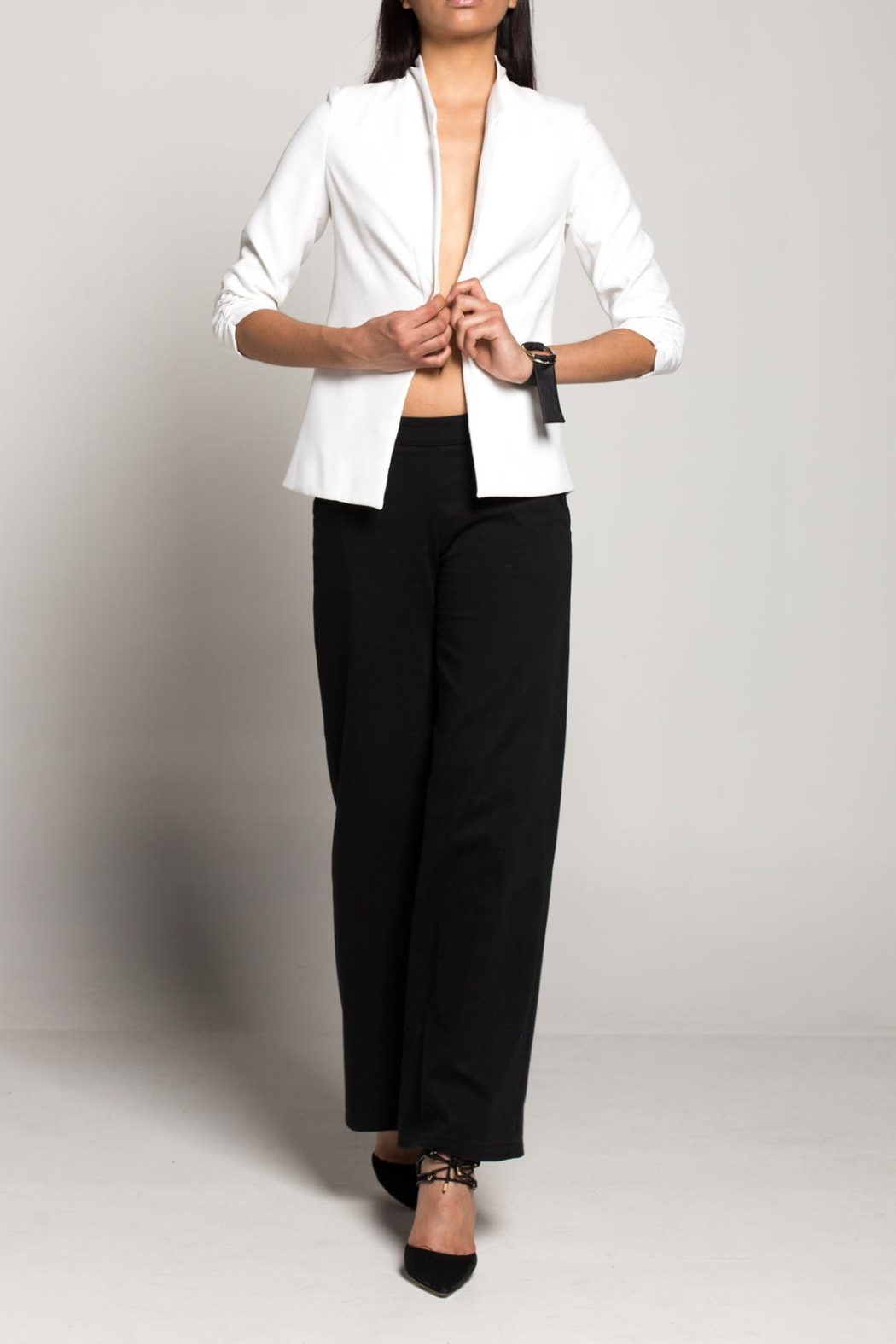 Cihuah Tailor Blazer - Front Cropped Image