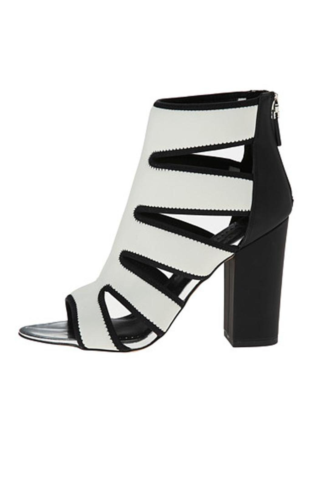 aadad4a874c9d Circus by Sam Edelman Caged Block Heel from Cleveland by HAVEN ...