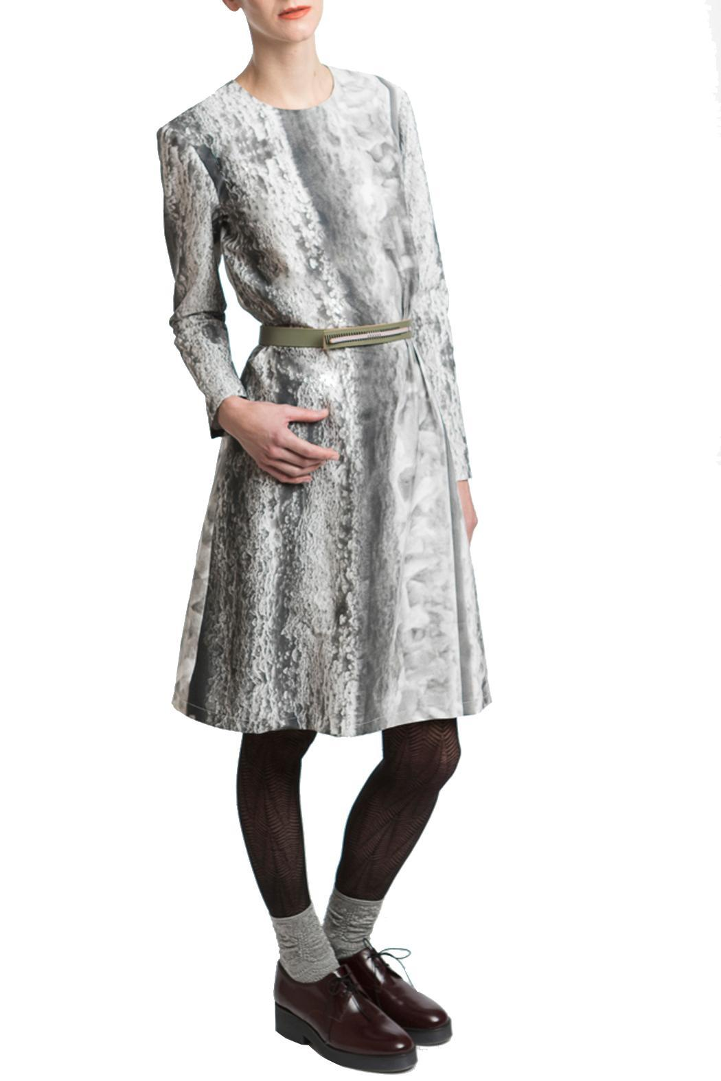 Clara Kaesdorf Dress Ice-Crystal Print - Main Image