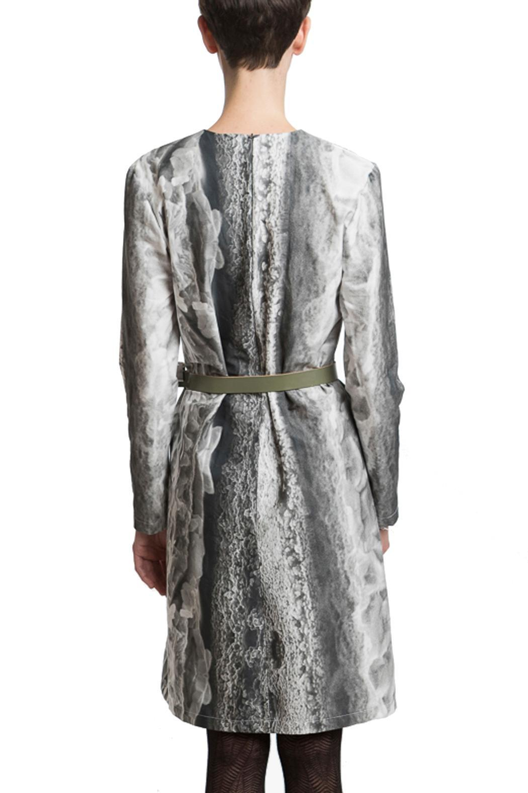 Clara Kaesdorf Dress Ice-Crystal Print - Side Cropped Image