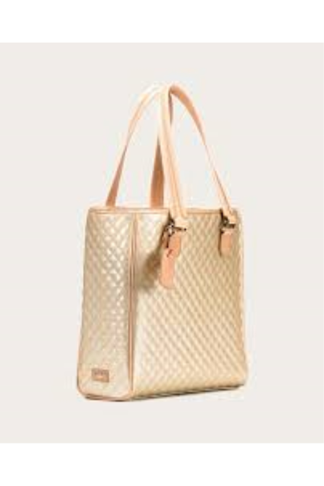 The Birds Nest CLASSIC TOTE-CANDY CHAMPAGNE - Main Image