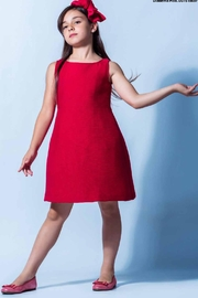 Barcarola Classy Red Dress - Front cropped