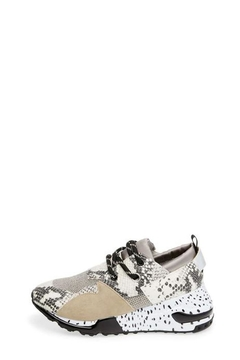 Steve Madden Cliff Snake Sneaker - Alternate List Image