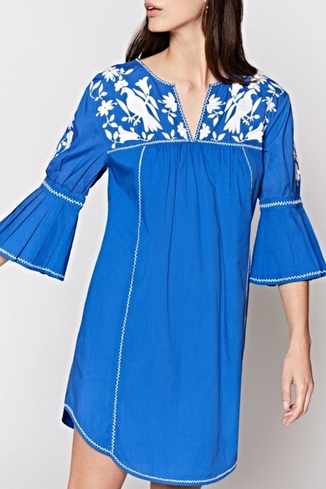 Joie Clodagh Dress - Front Full Image
