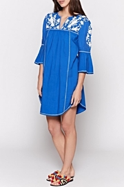 Joie Clodagh Dress - Front cropped