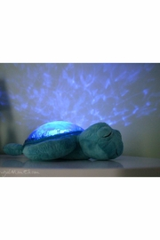 Cloud B Musical Turtle Nightlight - Front full body