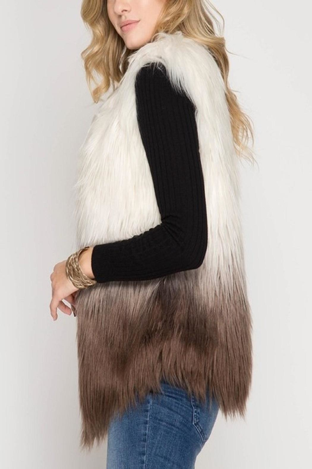 Cloudwalk Faux Fur Ombre - Side Cropped Image