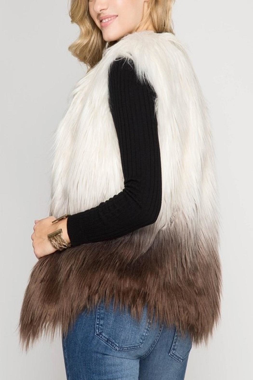 Cloudwalk Faux Fur Ombre - Back Cropped Image