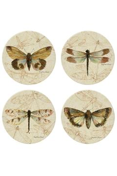 Coasterstone Dragonfly Moth Coaster Collection - Alternate List Image