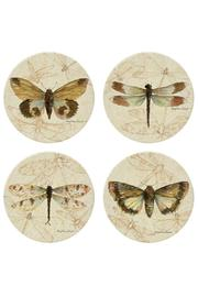 Coasterstone Dragonfly Moth Coaster Collection - Product Mini Image