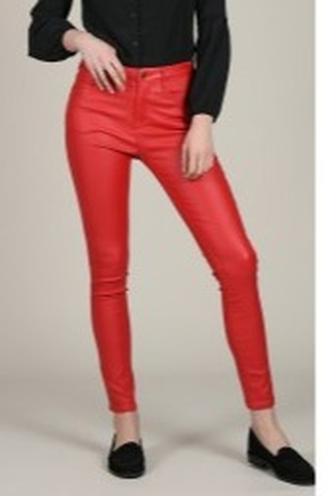 Molly Bracken Coated Zip-Up Pants - Front Cropped Image