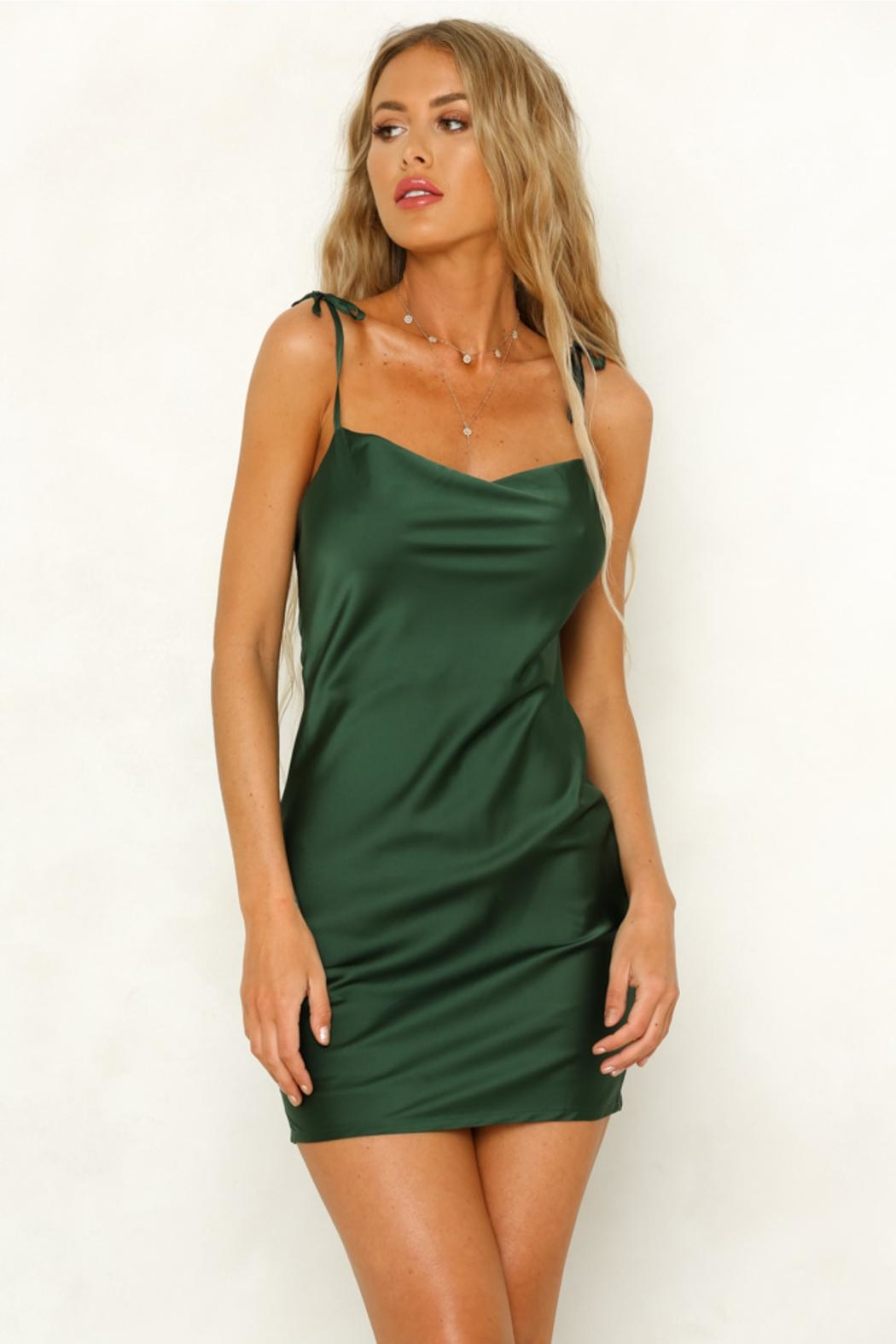 Rumor Cobra Slip Dress - Front Cropped Image