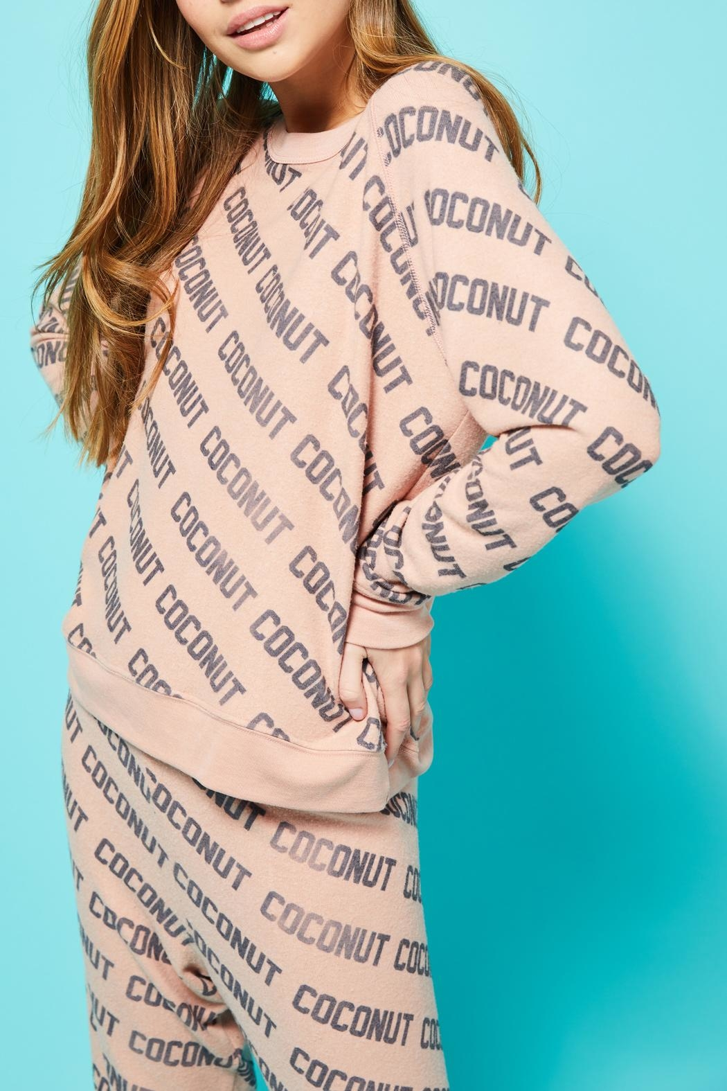 All Things Fabulous Coconut Cozy Jumper - Back Cropped Image