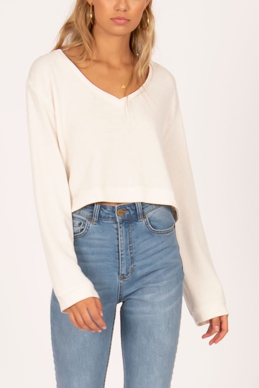 AMUSE SOCIETY Coconut Grove Knit Pullover - Front Cropped Image