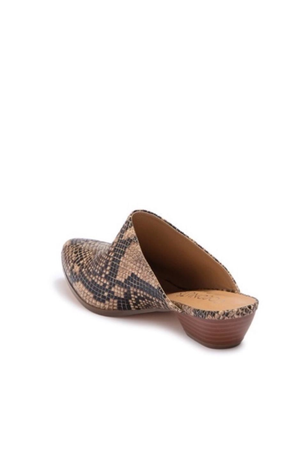 Coconuts by Matisse Leather Snake Slide - Back Cropped Image