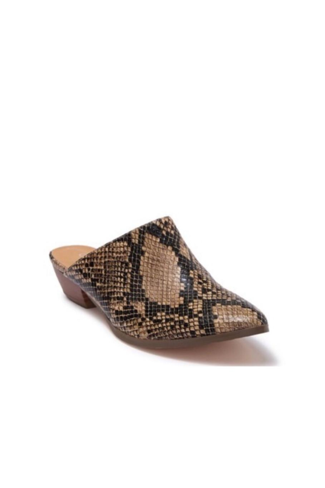 Coconuts by Matisse Leather Snake Slide - Front Full Image
