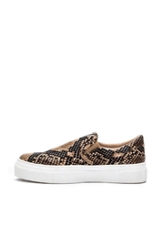 Coconuts by Matisse Snake Sneaker - Front cropped