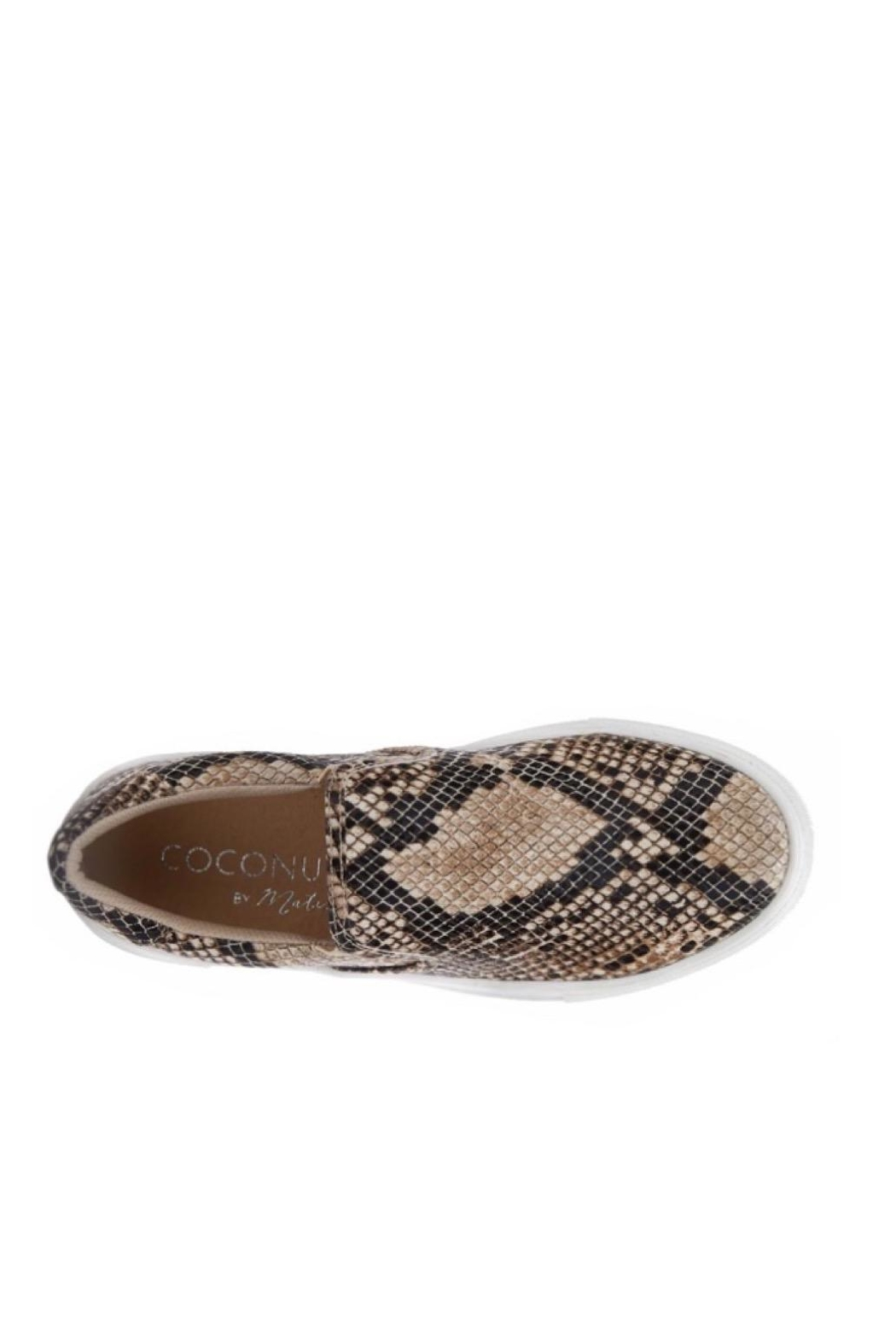 Coconuts by Matisse Snake Sneaker - Front Full Image