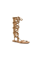 Coconuts by Matisse Zephyr Gladiator Sandal - Front full body