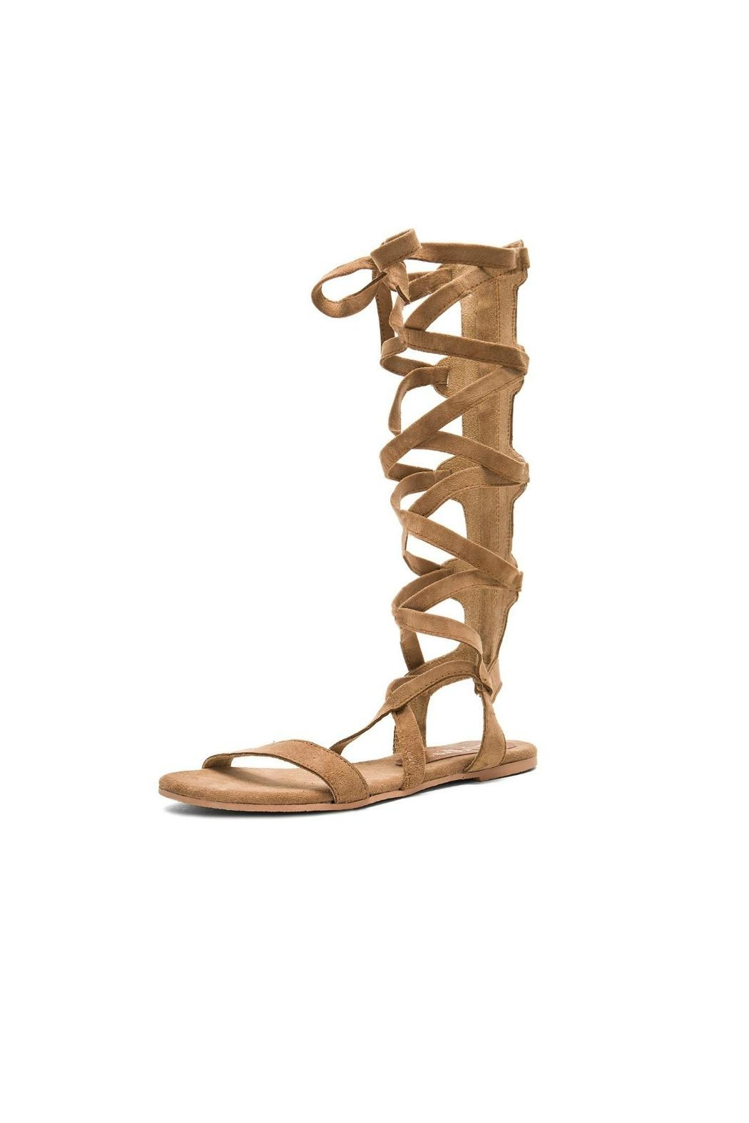 Coconuts by Matisse Zephyr Gladiator Sandal - Main Image
