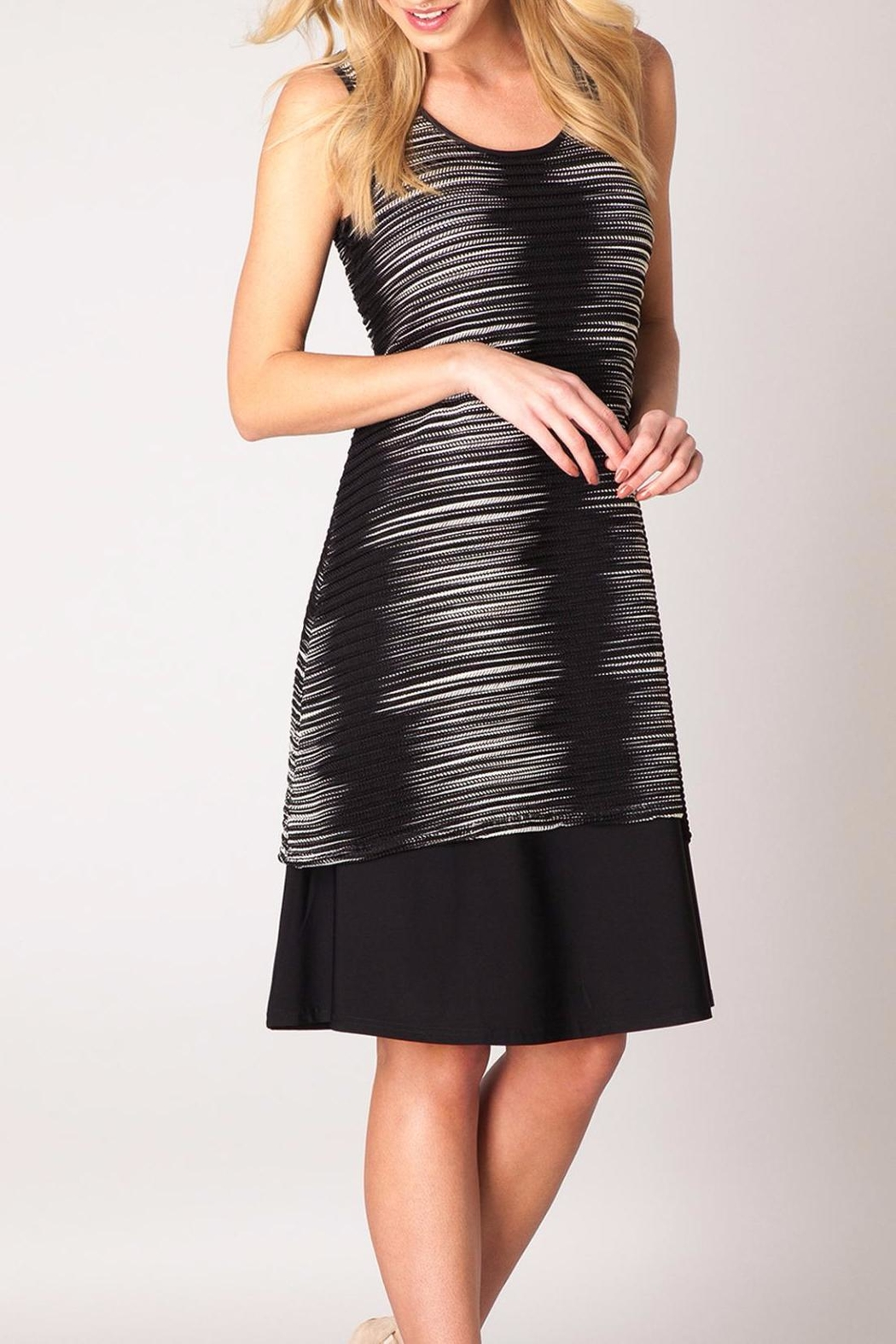 Colletta Zizag Sleeveless Dress - Main Image