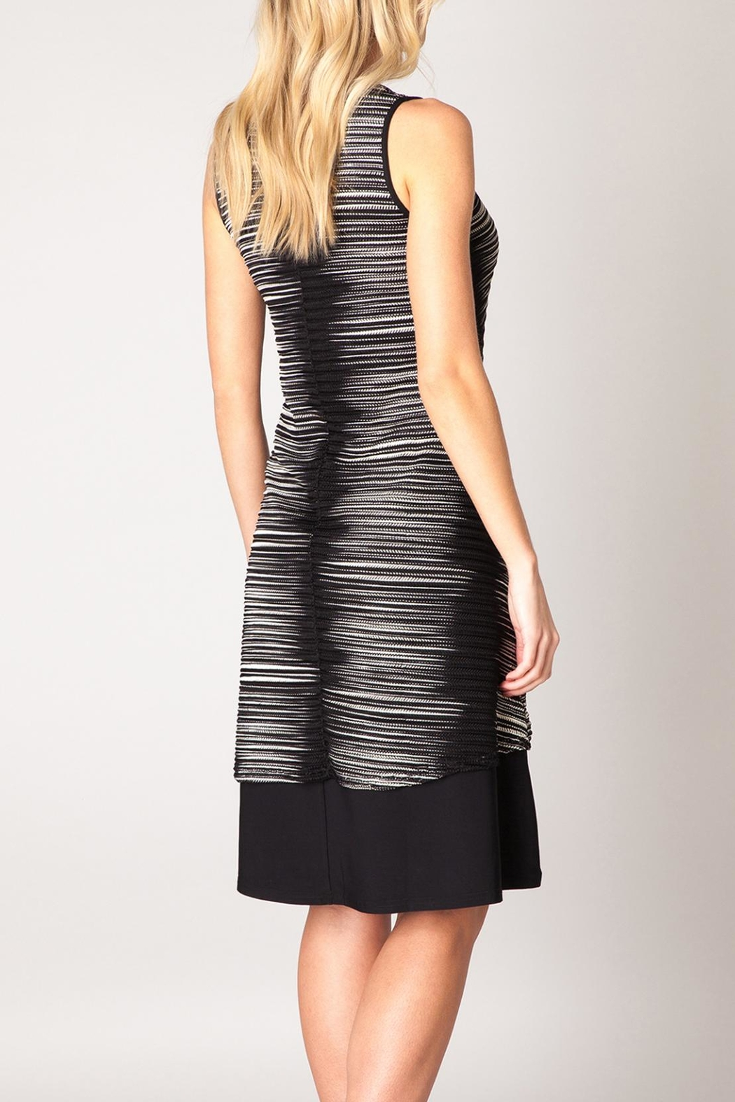 Colletta Zizag Sleeveless Dress - Front Full Image