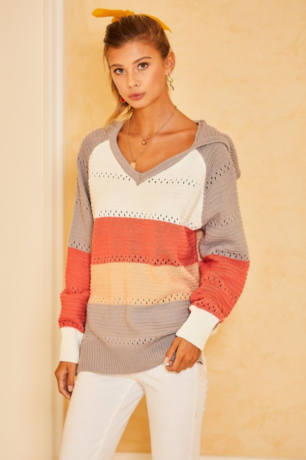 main strip  Color Block Crochet Hooded Sweater - Front Cropped Image