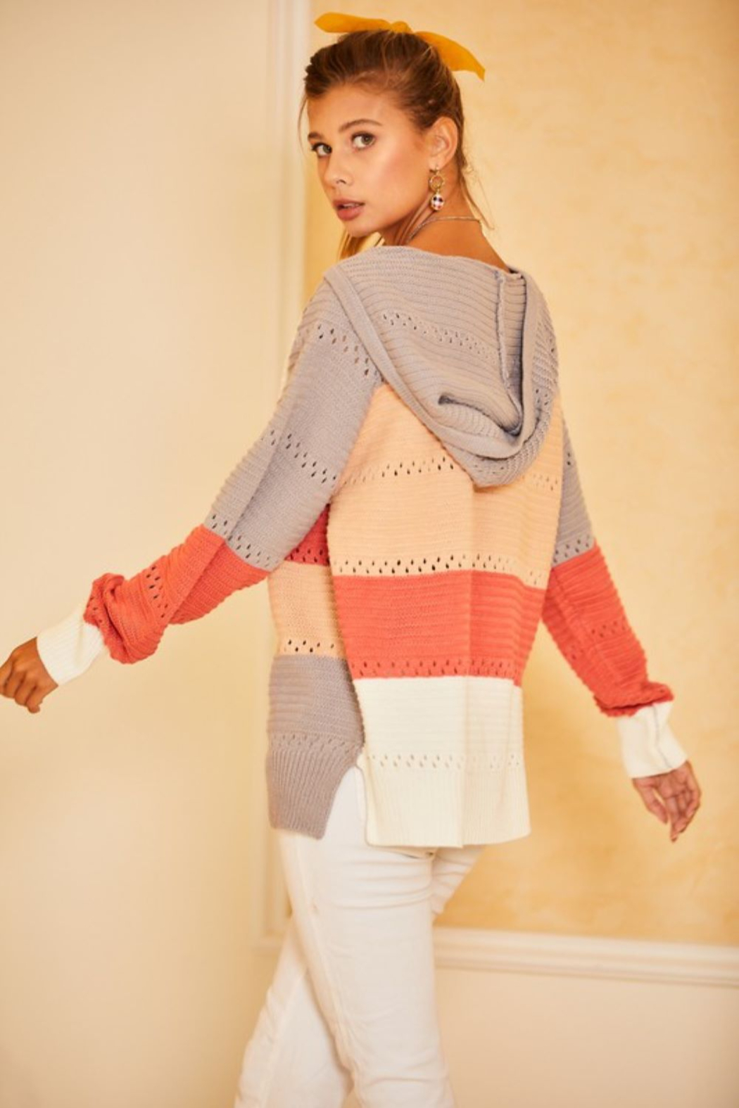 main strip  Color Block Crochet Hooded Sweater - Front Full Image