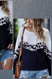 Shewin Color Block Leopard Waffle Top - Front full body