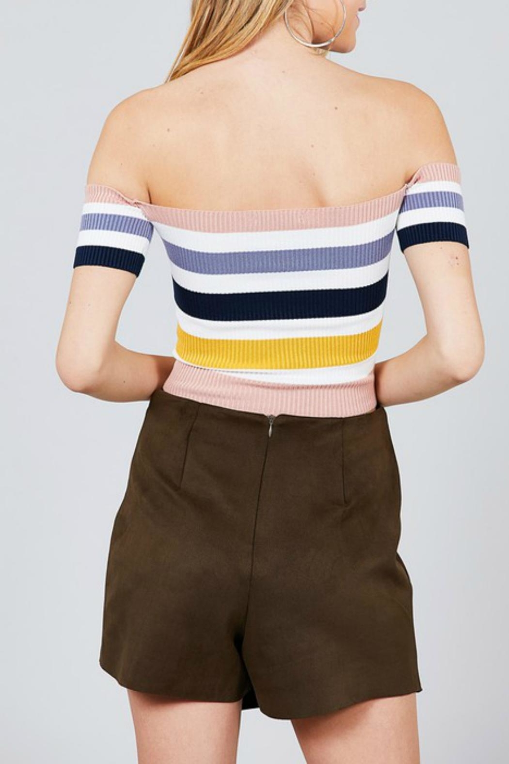 Pretty Little Things Colorblock Crop Top - Front Full Image