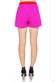 TCEC Colorblock Overlay Skort - Side cropped